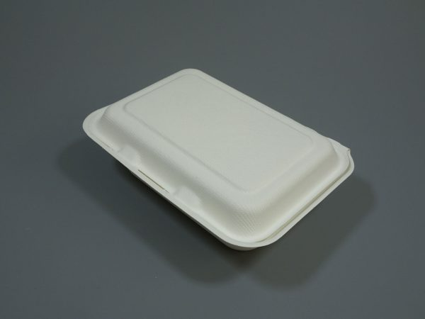 """Bagasse Clamshell Food Container 9""""x6"""" 1 Compartment White"""