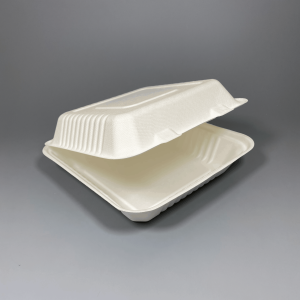 """Sugarcane Food Container 8"""" x 8"""" 1 Compartment"""