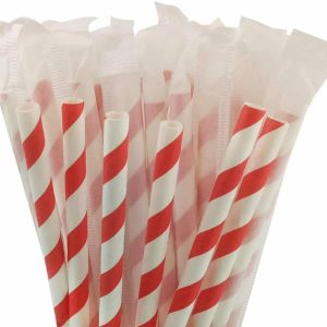 Individually Wrapped Paper Straws